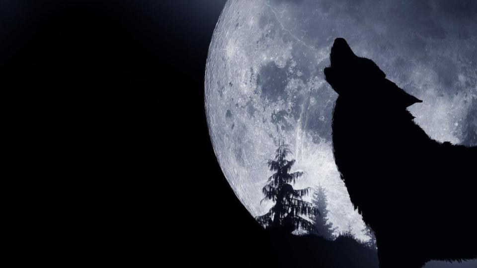 No te pierdas la primera Luna de Lobo del 2021