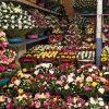 Mercado de Flores de Xochimilco.