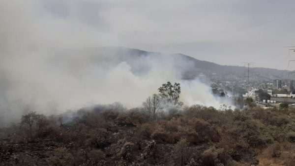 Incendio en el Ajusco a punto de generar una tragedia