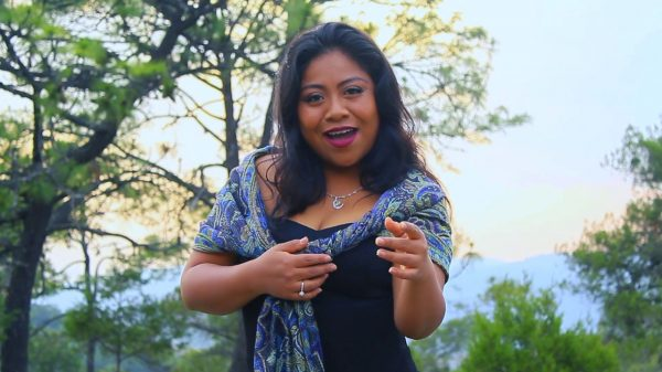 Hermana de Yalitza Aparico candidata a diputada