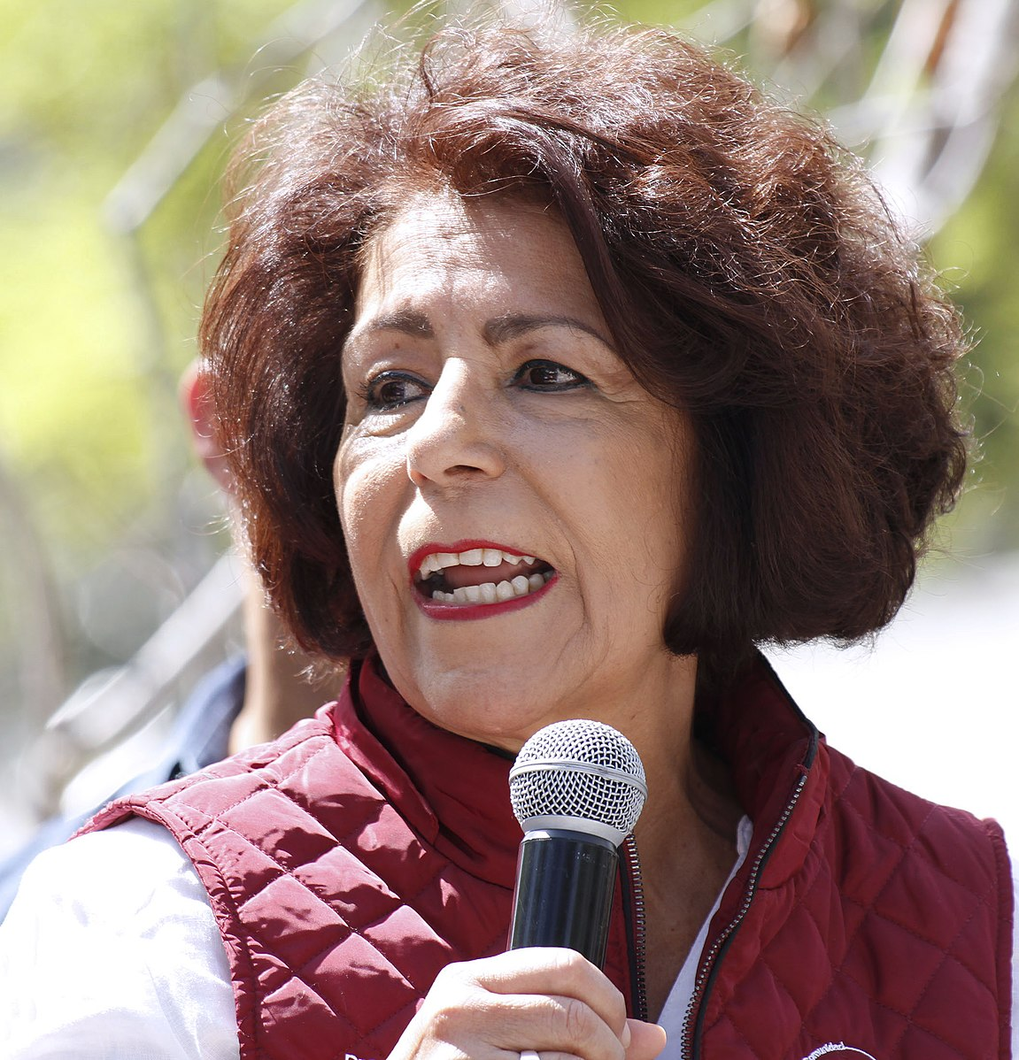 Inseguridad en Tlalpan fracaso de Patricia Aceves