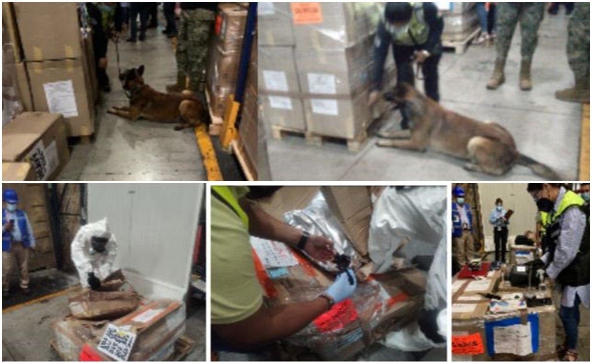 Detecta perro mil kilos de cocaína