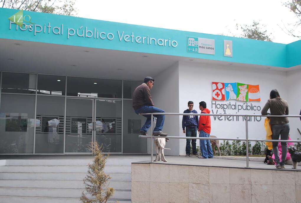 Exigen reabrir clínicas veterinarias en la GAM e Iztapalapa